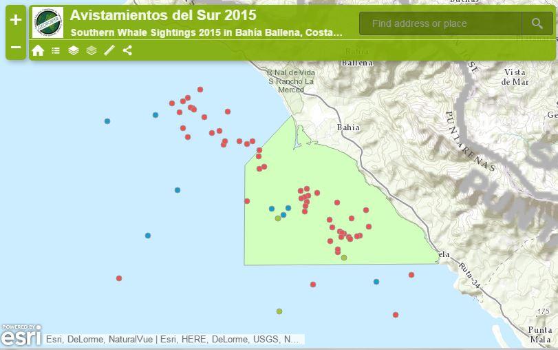 whales-maps-bahia-ballena-pnmb-2015