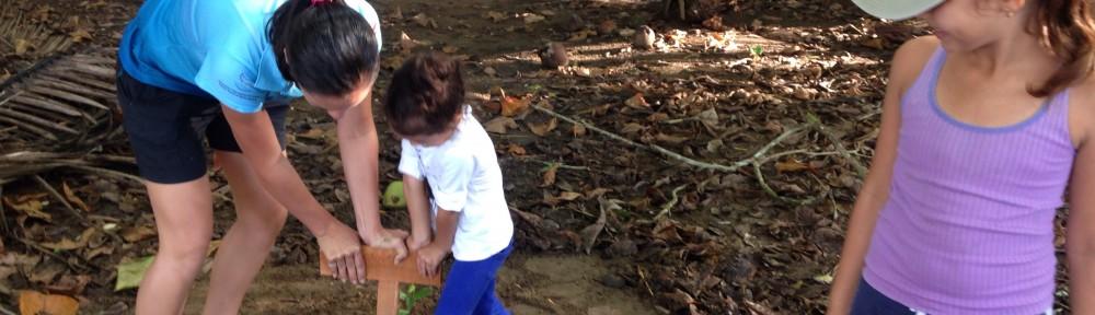 reforestation-semilla-de-ballena